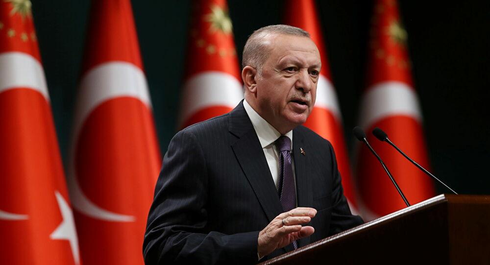 أردوغان لنظيره الألماني: تركيا غير قادرة على تحمُّل أعباء موجة لجوء جديدة