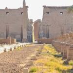 مصر تستعد لحدث عالمي تتوقع أن يلفت انتباه العالم