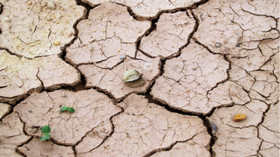 متى قد تصبح الأرض غير صالحة للحياة البشرية؟